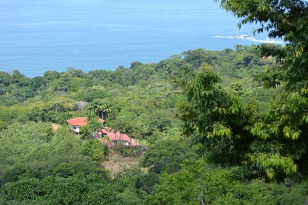 Set on 250 Acres in Costa Rica